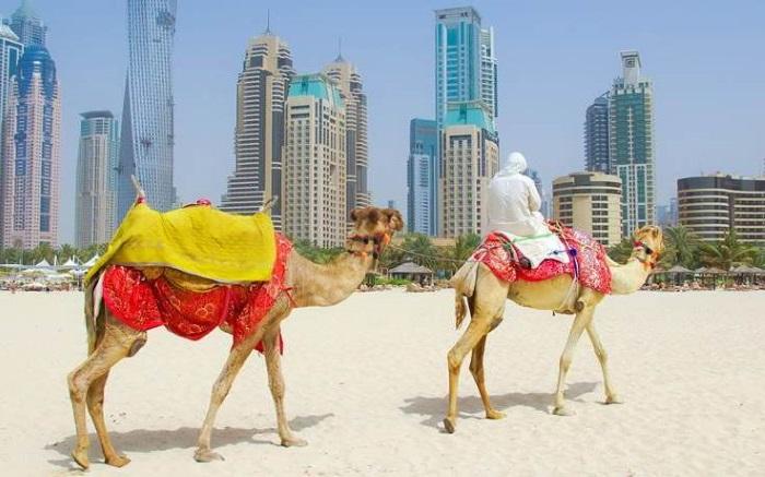 Въезд в ОАЭ: как получить визу